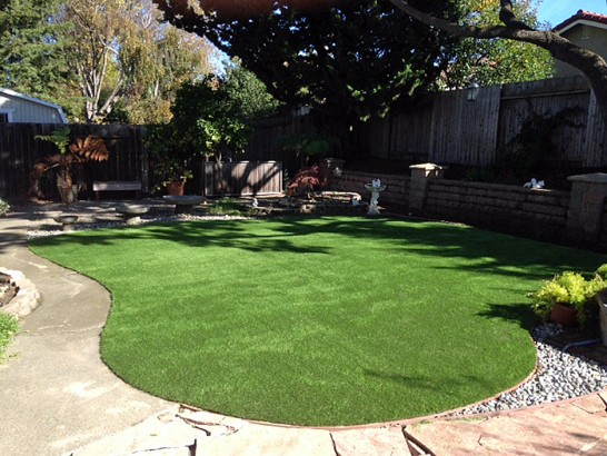Artificial Grass Photos: Artificial Grass Carpet Valle Vista, California Landscaping, Beautiful Backyards