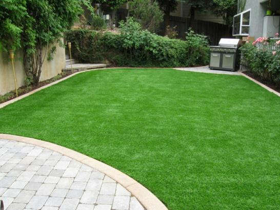 Artificial Grass Photos: Artificial Grass Idyllwild, California Landscaping Business