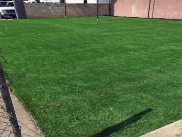 Artificial Grass Photos: Artificial Grass Installation Indio, California High School Sports