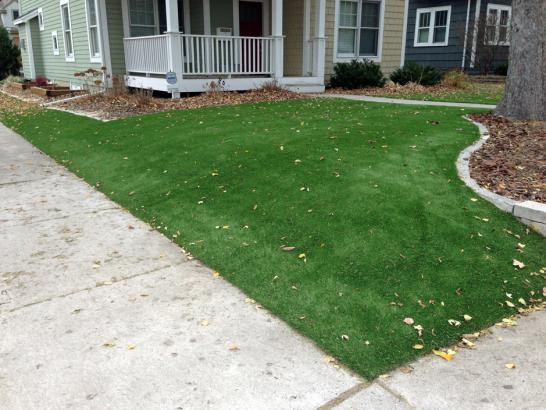 Artificial Grass Photos: Artificial Grass Installation Mira Loma, California Design Ideas, Front Yard Ideas