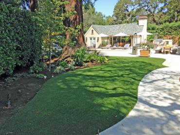 Artificial Grass Photos: Artificial Grass Lakeview, California Lawn And Garden, Commercial Landscape
