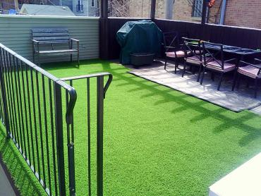 Artificial Grass Photos: Artificial Grass Mortmar, California Indoor Dog Park, Backyard Landscaping