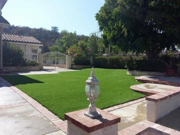 Artificial Grass Photos: Artificial Grass Sedco Hills, California Gardeners, Front Yard Landscape Ideas
