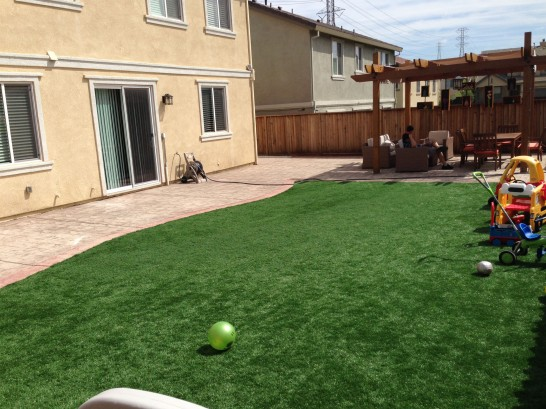 Artificial Grass Photos: Artificial Lawn Calimesa, California Landscape Design, Beautiful Backyards