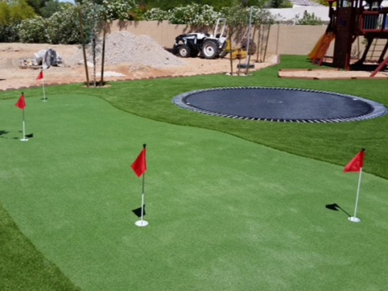 Artificial Lawn Lakeview, California Artificial Putting Greens, Backyards artificial grass