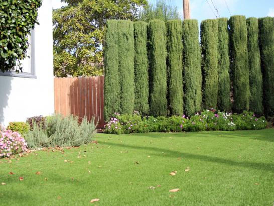 Artificial Grass Photos: Artificial Turf Cost Bermuda Dunes, California Gardeners, Small Front Yard Landscaping