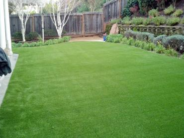 Artificial Grass Photos: Artificial Turf Cost Mead Valley, California Landscaping Business, Small Backyard Ideas