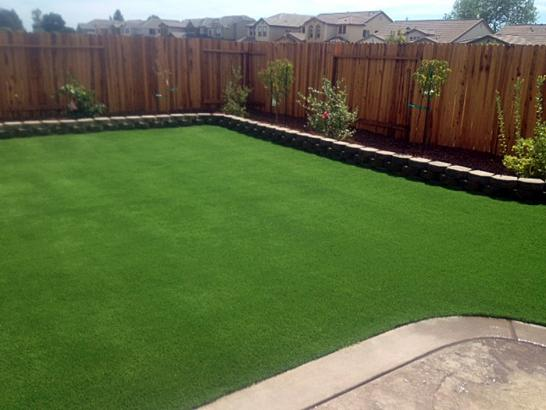 Artificial Grass Photos: Artificial Turf Installation Mecca, California City Landscape, Backyard