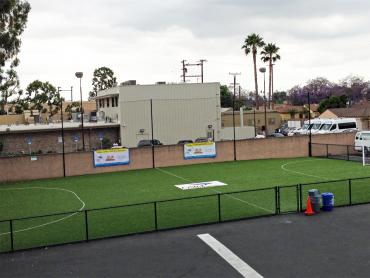 Artificial Grass Photos: Artificial Turf Mira Loma, California Sports Athority, Commercial Landscape