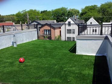 Artificial Grass Photos: Best Artificial Grass Wildomar, California Dog Run, Deck
