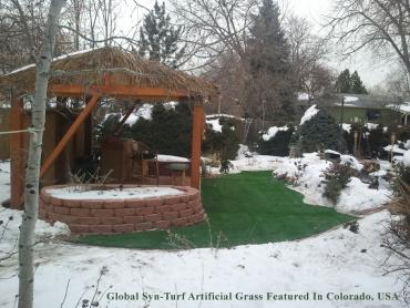 Artificial Grass Photos: Fake Grass Carpet Anza, California Rooftop, Backyard Landscaping Ideas