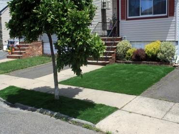 Artificial Grass Photos: Fake Grass Carpet Ripley, California Design Ideas, Front Yard Landscaping