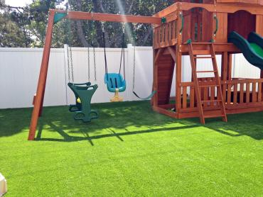 Artificial Grass Photos: Fake Grass Carpet Winchester, California City Landscape, Backyard Landscape Ideas