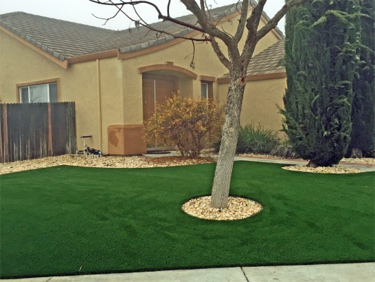 Artificial Grass Photos: Fake Grass Mead Valley, California Roof Top, Small Front Yard Landscaping