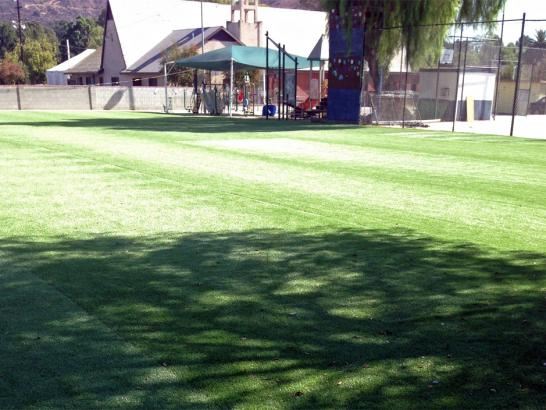 Artificial Grass Photos: Fake Grass Valle Vista, California Home And Garden, Parks