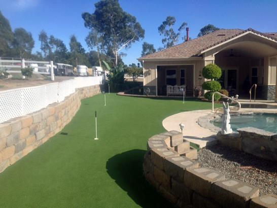Artificial Grass Photos: Fake Turf Glen Avon, California Home And Garden, Backyard Designs