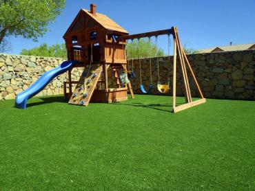 Artificial Grass Photos: Fake Turf Indio Hills, California Kids Indoor Playground, Backyard Garden Ideas