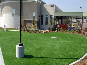 Artificial Grass Photos: Faux Grass Beaumont, California Gardeners, Commercial Landscape