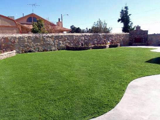 Artificial Grass Photos: Grass Carpet Glen Avon, California Lawn And Landscape, Backyard Garden Ideas