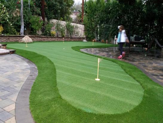 Artificial Grass Photos: Grass Carpet Indio Hills, California Backyard Putting Green, Small Backyard Ideas