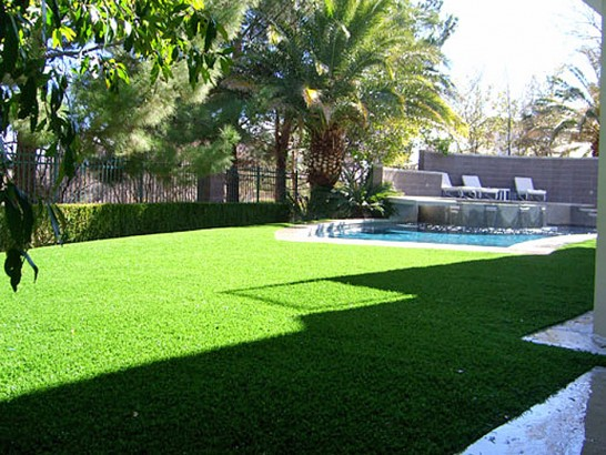 Grass Carpet Lakeland Village, California Lawns, Above Ground Swimming Pool artificial grass