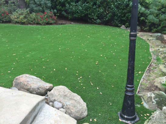 Grass Carpet Murrieta, California Garden Ideas, Backyards artificial grass