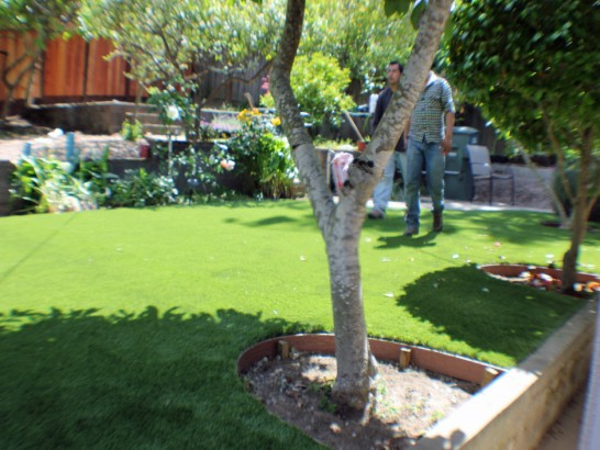Grass Carpet Temecula, California Home And Garden, Small Backyard Ideas artificial grass