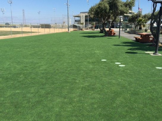Artificial Grass Photos: Grass Turf Homeland, California Gardeners, Parks