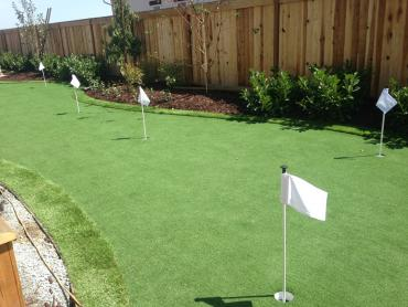 Artificial Grass Photos: Grass Turf Quail Valley, California Home Putting Green, Backyard Landscape Ideas