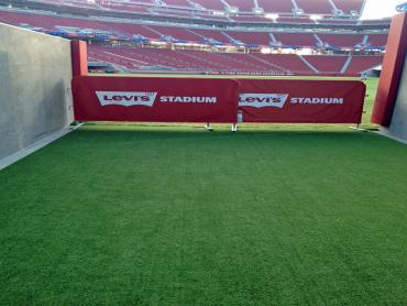 Artificial Grass Photos: Grass Turf San Jacinto, California Red Turf