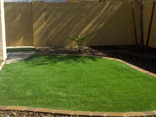 Green Lawn Good Hope, California Design Ideas, Backyard Landscaping Ideas artificial grass