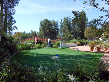 Artificial Grass Photos: Lawn Services Nuevo, California Putting Greens, Backyard Makeover