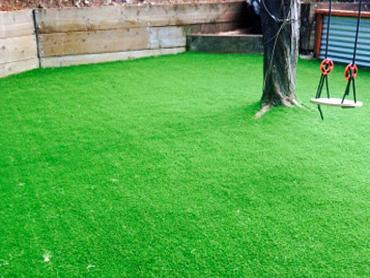 Artificial Grass Photos: Lawn Services Quail Valley, California Playground Flooring, Backyard Designs