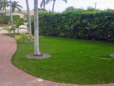 Artificial Grass Photos: Outdoor Carpet Blythe, California Backyard Playground, Front Yard Landscaping