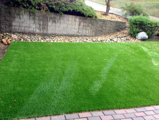 Outdoor Carpet Mountain Center, California Landscaping Business, Front Yard Landscaping Ideas artificial grass