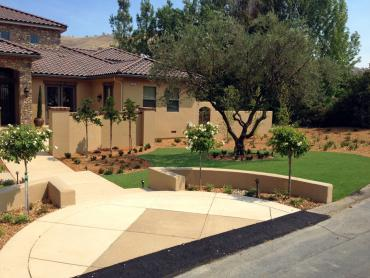 Artificial Grass Photos: Outdoor Carpet Sky Valley, California Landscape Photos, Front Yard