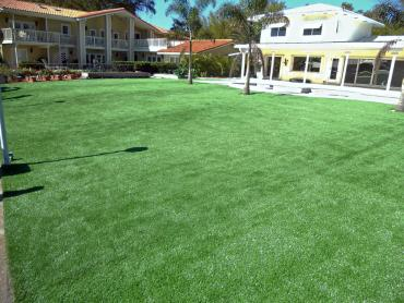 Artificial Grass Photos: Outdoor Carpet Thermal, California Landscaping Business, Backyard Pool