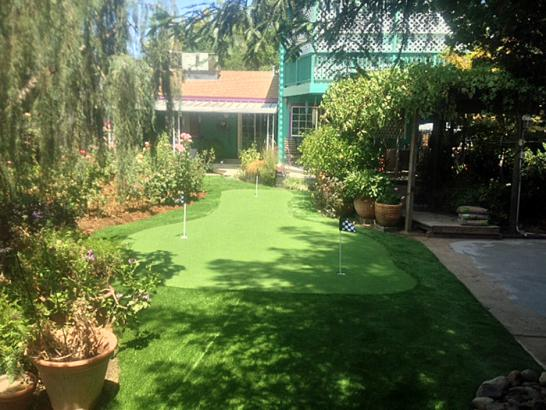 Plastic Grass Aguanga, California Lawn And Garden artificial grass