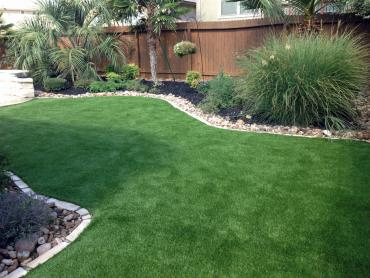 Artificial Grass Photos: Plastic Grass Beaumont, California Home And Garden, Backyard Landscaping