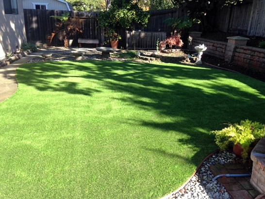 Artificial Grass Photos: Plastic Grass Coachella, California Pictures Of Dogs, Backyard