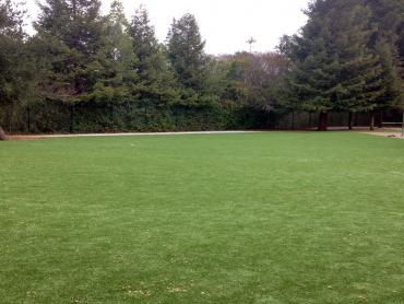 Artificial Grass Photos: Plastic Grass Sky Valley, California Design Ideas, Recreational Areas