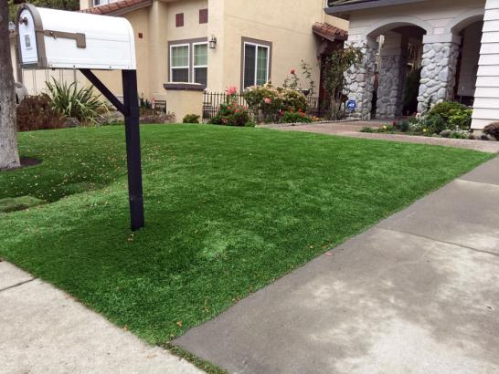 Synthetic Grass Cost Lake Elsinore, California Garden Ideas, Front Yard Landscaping artificial grass