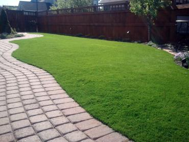 Artificial Grass Photos: Synthetic Grass Desert Hot Springs, California Landscape Design, Backyard Garden Ideas