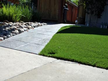 Artificial Grass Photos: Synthetic Grass Palm Desert, California Rooftop, Front Yard Design
