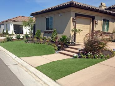 Artificial Grass Photos: Synthetic Grass Ripley, California Landscaping Business, Front Yard Ideas