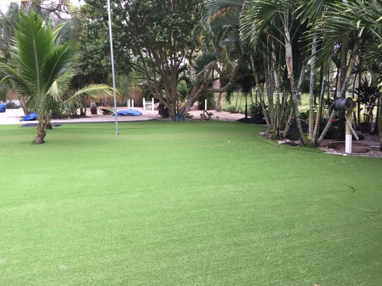Artificial Grass Photos: Synthetic Lawn Banning, California Landscape Rock, Commercial Landscape
