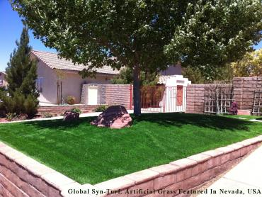 Artificial Grass Photos: Synthetic Lawn Bermuda Dunes, California Garden Ideas, Front Yard Landscape Ideas