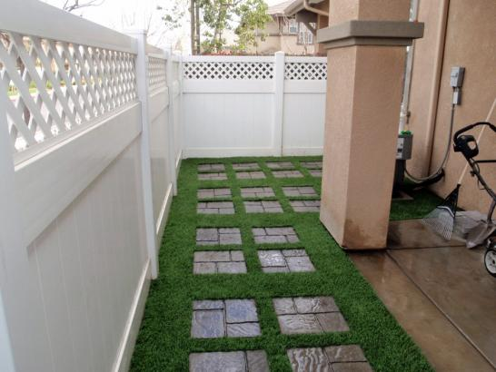Artificial Grass Photos: Synthetic Lawn Ripley, California Landscape Design, Backyards