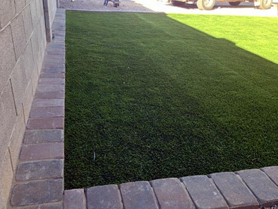 Artificial Grass Photos: Synthetic Turf Good Hope, California Dog Park, Landscaping Ideas For Front Yard