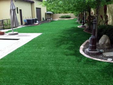 Artificial Grass Photos: Synthetic Turf Quail Valley, California Design Ideas, Small Backyard Ideas